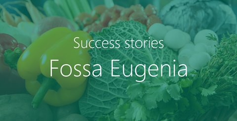 Fossa Eugenia | An IT landscape that's solid as a rock